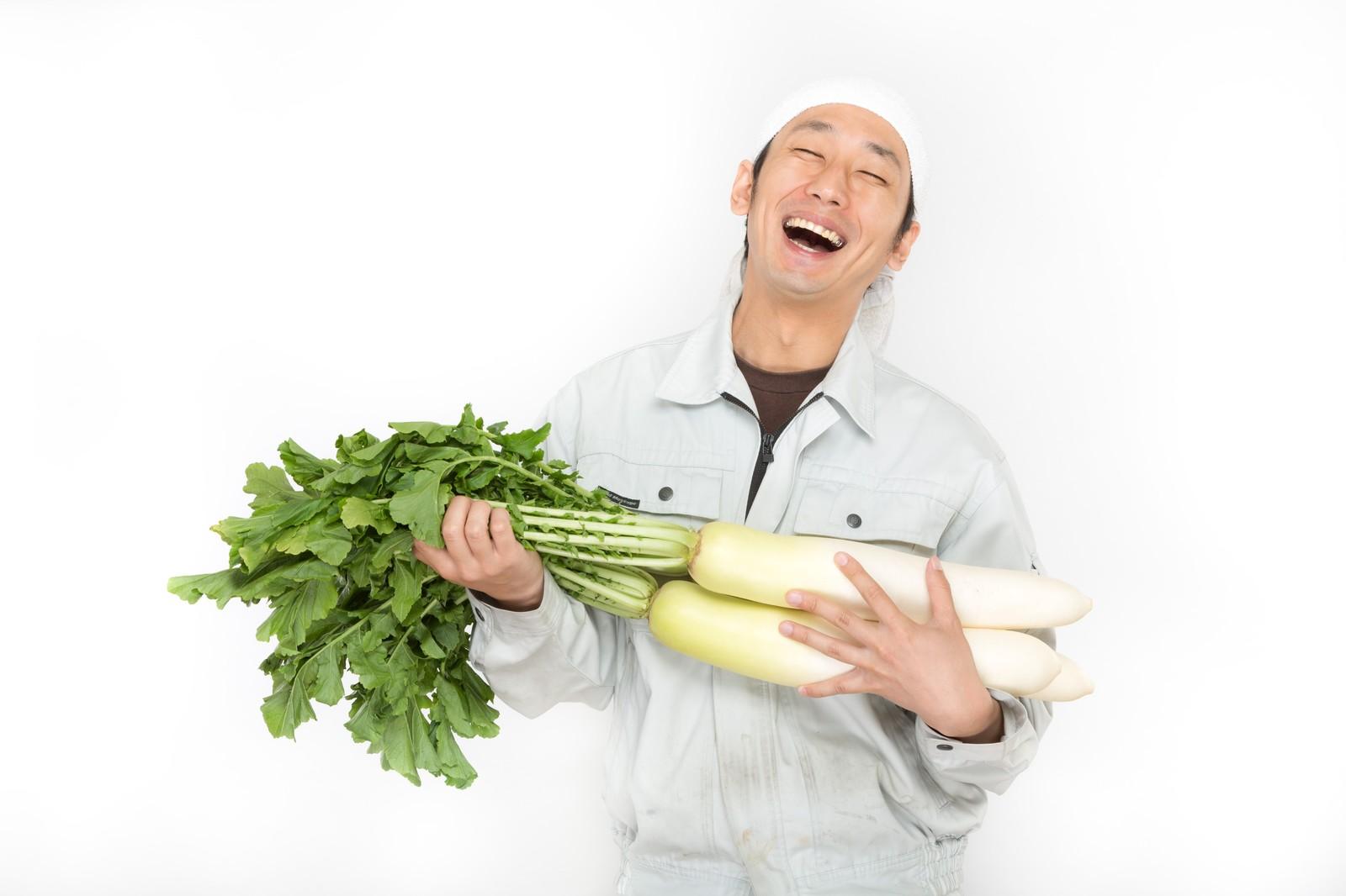 大根の葉レシピ