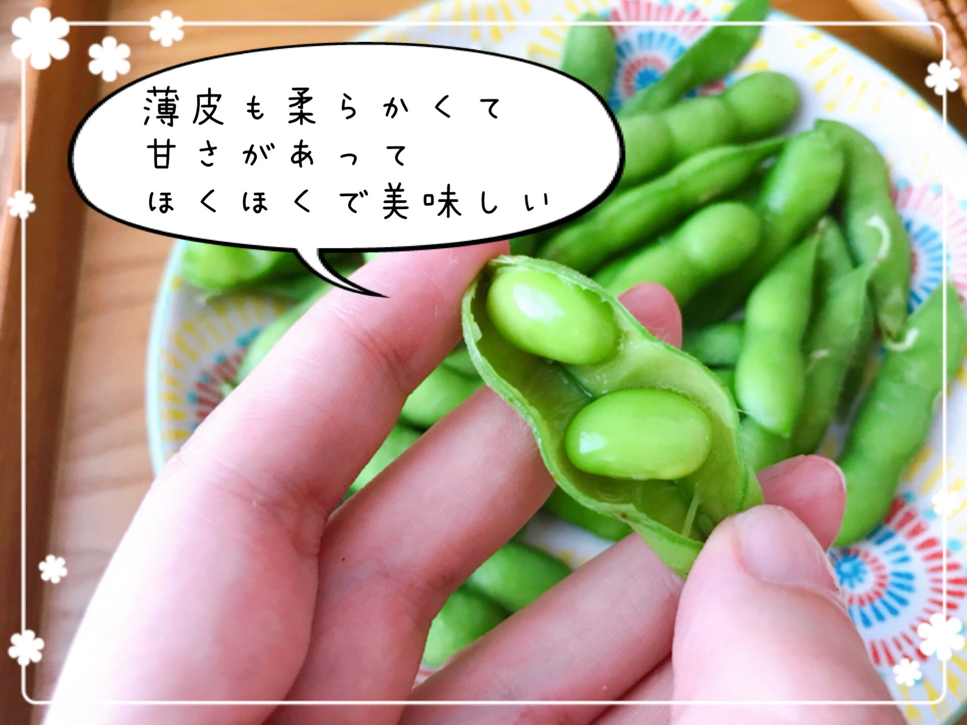 おうちコープ 神奈川ひとり暮らし